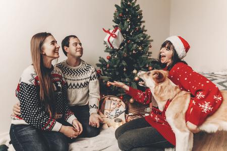 Famille heureuse dans des chandails élégants et chien mignon s'amuser à l'arbre de Noël avec des lumières. moments émotionnels atmosphériques. joyeux Noël et bonne année concept. espace pour le texte