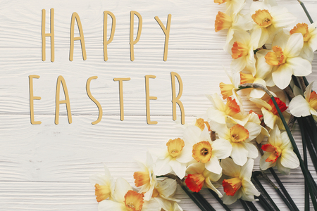 happy easter text flat lay with yellow flowers. stylish daffodils on rustic wooden background top view.  easter greeting card. space for text Stockfoto