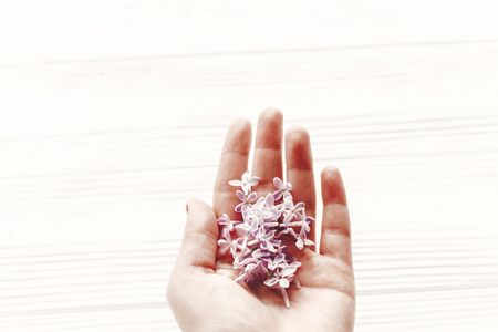 hand holding beautiful tender lilac flowers and petals in light on white wooden rustic background top view. happy earth day. greeting card. hello spring image. space for text. happy mothers day Archivio Fotografico