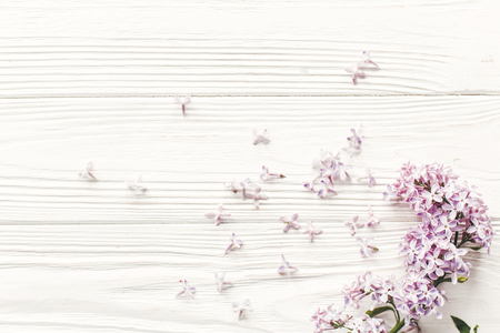 beautiful lilac flowers on rustic white wooden background top view. space for text. greeting card. earth day. happy mothers woman day. eco. hello spring flat lay image