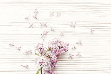 happy mothers day. spring flat lay with tenderl lilac flowers in soft light on rustic wooden background top view. hello spring. womens day. greeting card. space for text