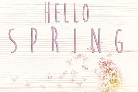 hello spring text sign on beautiful lilac flowers on rustic white wooden background top view. space for text. greeting card. earth day. eco. hello spring flat lay image 写真素材