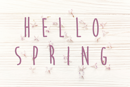 hello spring text sign on beautiful tender lilac flowers and petals in light on white wooden rustic background top view. happy earth day. greeting card. hello spring image.