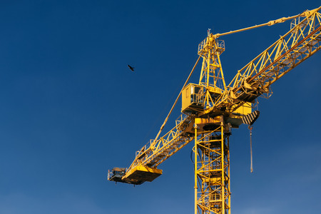 Construction crane tower and flying bird on background of blue sky.
