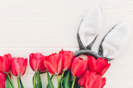 happy easter concept. bunny ears and stylish pink tulips on white wooden background flat lay with space for text. creative easter image. spring seasons greeting card mock-up