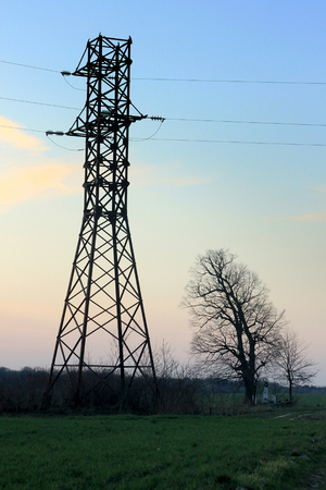 power line tower and tree on the background of  sunset and meadow in springtime Archivio Fotografico - 99935774