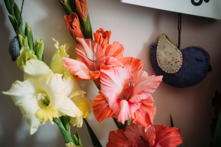 beautiful stylish bouquet of colorful gladioli and bird, greeting card