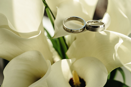 luxury rich silver platinum wedding rings with diamonds on white flowers Stock Photo