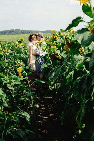 beautiful gorgeous bride and stylish handsome groom, rustic couple in a sunflower  field kissing 写真素材