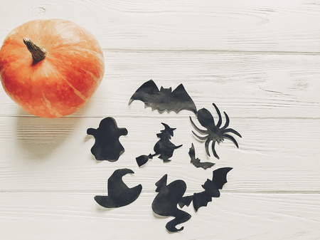 halloween flat lay. happy halloween concept. pumpkin with witch ghost bats and spider black decorations on white wooden background top view with space for text. cutouts for autumn holiday Zdjęcie Seryjne