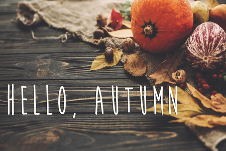 Hello Autumn Text. Hello Fall sign on beautiful Pumpkin, autumn vegetables with colorful leaves,acorns,nuts, berries on wooden rustic table. Cozy Fall season. Atmospheric image
