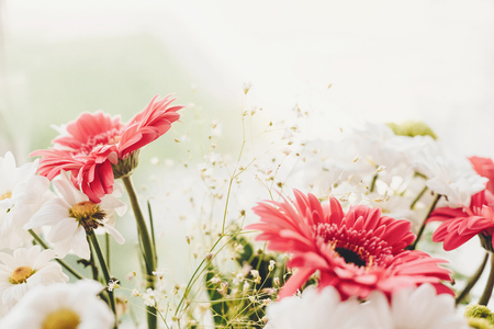 Pink gerbera,white daisy and green chrysanthemum in beautiful  bouquet at rustic window in soft light. Wedding invitation,happy mother day or Valentine day concept. Hello spring 写真素材