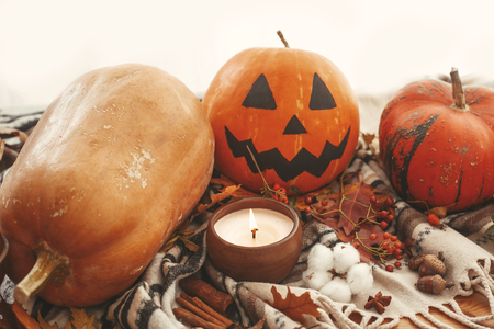 Happy Halloween concept. Pumpkins and Jack-o-lantern with candle light, autumn leaves, berries, nuts, acorns on rustic background. Seasons greetings. Space for text.