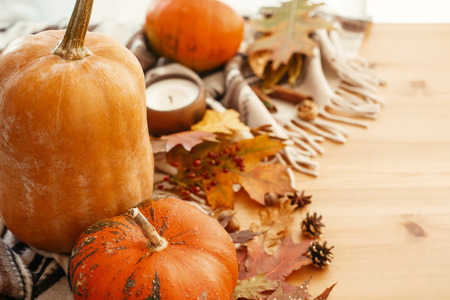 Happy Thanksgiving concept. Beautiful pumpkins, candle light, fall leaves, berries, nuts, acorns, cotton on soft blanket background. Seasons greetings. Cozy autumn image