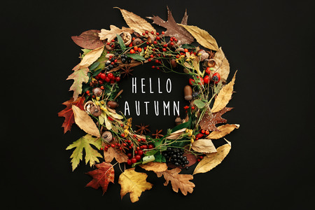 Hello Autumn text on autumn wreath flat lay. Fall leaves circle with berries, nuts, acorns, flowers,herbs on black background. Creative composition. Seasons greetings card. 免版税图像
