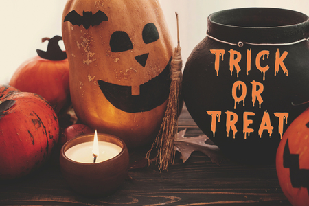 Trick or Treat bloody text, Happy Halloween. Pumpkins, jack-o-lantern, witch cauldron, bats, spider, candle, autumn leaves on black wood in light. Halloween decoration. Seasons greeting