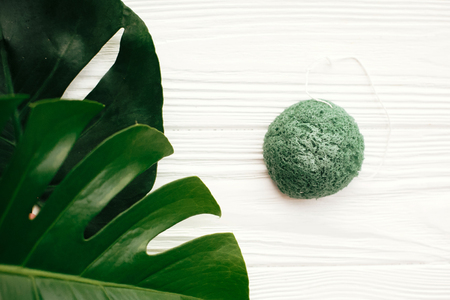 Natural eco friendly konjaku sponge on white wood with green monstera leaves. Zero waste concept. Eco products plastic free. Skin Care and treatment