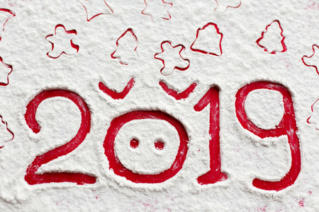 Pig 2019. Pig nose and 2019 with christmas tree, gingerbread man, stars drawn on flour or snow on red background. Happy new year. Chinese new year symbol. Creative photo Stock Photo
