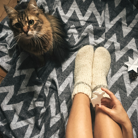 Cute cat playing with holiday ornaments at girl legs in christmas woolen socks and stylish reindeer toy in hands.