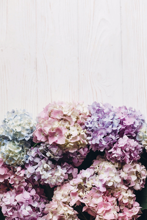 Beautiful hydrangea flowers on rustic white wood, flat lay. Colorful pink,blue,green,white border of hydrangea, greeting card with space for text. Hello spring. Happy mothers day. Women day