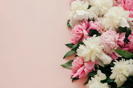 Pink and white peonies on pastel pink paper with space for text. Hello spring. Happy mothers day, floral greeting card mockup. International Womens Day. Stylish girly image