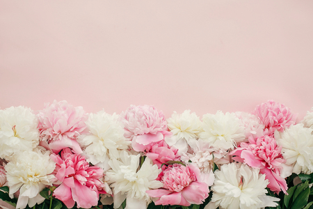 Stylish peonies flat lay. Pink and white peonies border on pastel pink paper with space for text. Happy mothers day, floral greeting card mockup. International Womens Day. Valentines day.