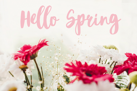Hello Spring text sign on pink gerbera,white daisy and green chrysanthemum  bouquet at rustic window in soft light. Stylish floral greeting card. Imagens
