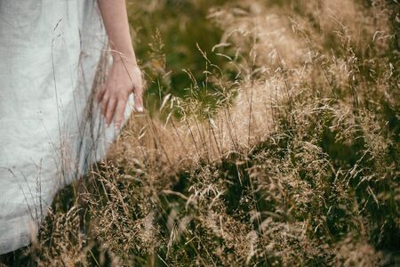 Hand among herbs and wildflowers in field. Boho woman walking in countryside among grass, simple slow life style. Space for text. Atmospheric image
