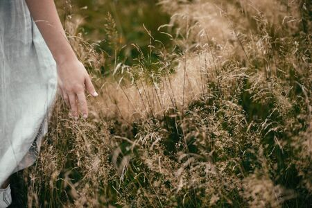 Stylish girl in linen dress gathering herbs and wildflowers in field, hand close up. Boho woman walking in countryside among grass, simple slow life style. Space for text. Atmospheric image Фото со стока