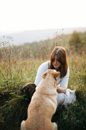 Stylish boho girl playing with her cute dogs in grass and wildflowers in sunny meadow in mountains at sunset. Traveling together with pets. Young woman caressing her golden dog Imagens