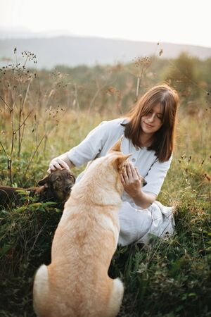 Stylish boho girl playing with her cute dogs in grass and wildflowers in sunny meadow in mountains at sunset. Traveling together with pets. Young woman caressing her golden dog Banco de Imagens