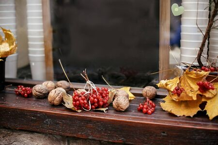 Red berries , walnuts and yellow leaves in city street, holiday autumnal decoration of store fronts. Halloween street decor. Space for text. Trick or treat. Happy halloween. Autumn market