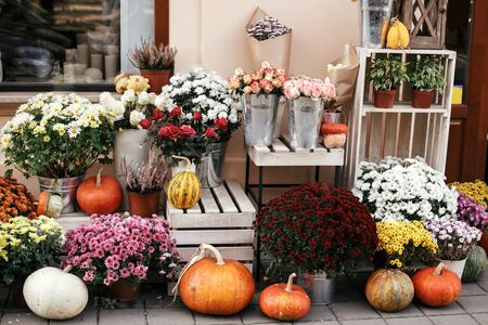 Pumpkins,squash and flowers on rustic wooden boxes in city street, holiday decorations store fronts and buildings. Halloween street decor. Space for text. Trick or treat. Happy halloween Stock fotó