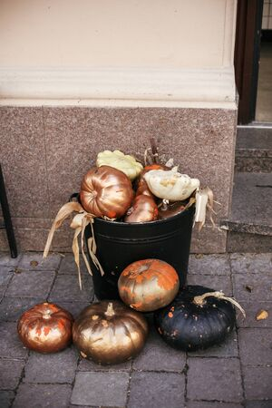Halloween street decor. Stylish golden pumpkins and squash in city street, holiday decorations store fronts and buildings. Space for text. Trick or treat. Happy halloween. Autumn market