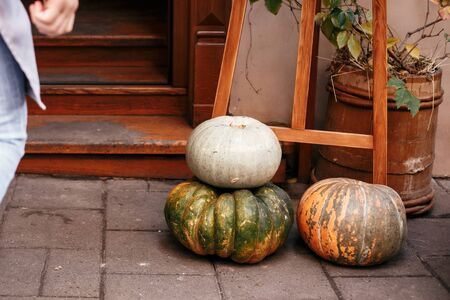 Halloween street decor. Pumpkins and squash in city street, holiday decorations store fronts and buildings. Space for text. Trick or treat. Happy halloween. Autumn market in town