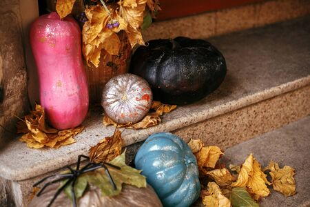 Colorful pumpkins and painted squash in city street, holiday decorations store fronts and buildings. Halloween street decor. Space for text. Trick or treat. Happy halloween. Autumn market