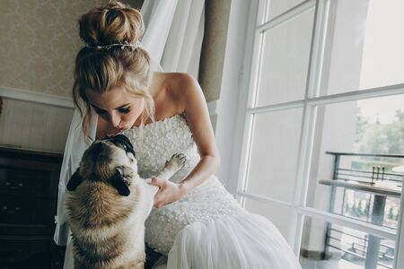 Stylish bride kissing  pug dog in bow tie in soft light near window in hotel room. Gorgeous bride with her pet. Morning preparation before wedding ceremony Stockfoto
