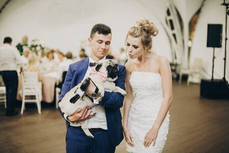 Stylish bride and groom hugging and having fun with pug dog in bow tie at wedding reception. Happy wedding couple with their dog celebrating at party Stockfoto