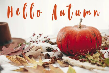 Hello Autumn text, fall greeting sign on pumpkin with berries, fall leaves, anise,herbs, acorns, nuts, cinnamon, cotton on white textile. Hygge lifestyle, cozy  mood Stockfoto - 129489372