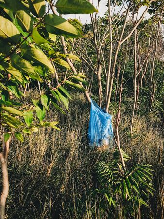 Big plastic bag with trash at tree in park or forest. Plastic pollution. Garbage on grass after people holiday. Rubbish disaster. Ban single use. Zero waste