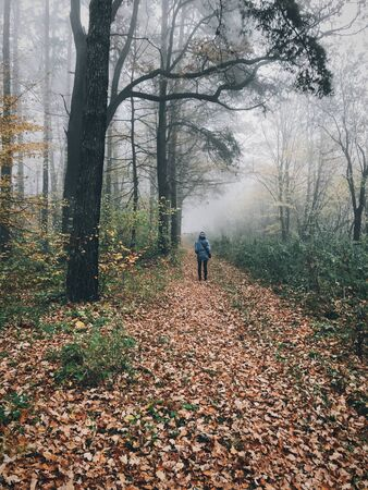 Traveler walking in autumn foggy woods with fall leaves in cold morning. Hipster girl hiking in autumn misty forest. Tranquil moment. Atmospheric morning