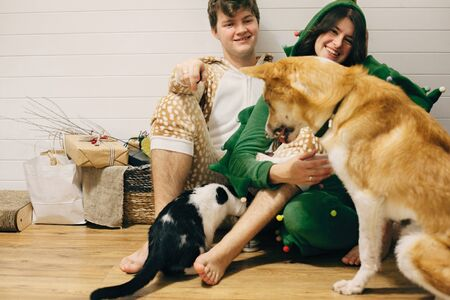 Happy couple in festive pajamas having fun and feeding pets with canned food. Stock Photo