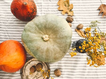 Pumpkins, nuts,yellow flowers, dried herbs, fall leaves on rustic table, flat lay. Fall decor and arrangement on table. Autumn harvest. Thanksgiving concept
