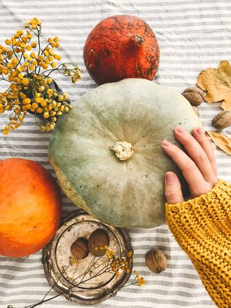 Hand in yellow sweater holding pumpkin and nuts,  flowers, fall leaves on rustic table, flat lay. Fall decor and arrangement on table. Autumn harvest. Thanksgiving concept. 免版税图像