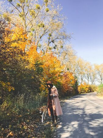 Hipster girl in hat and coat walking with her golden dog on autumn road with fall leaves. Woman with dog traveling in autumn countryside, walking at beautiful colorful trees 免版税图像