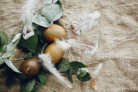 Stylish easter eggs in rustic nest with feathers on rustic table. Natural dyed green easter eggs with eucalyptus branch, spring flowers on rural textile background. Flat lay