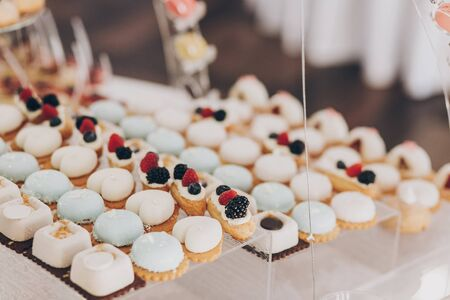 Delicious creamy desserts with fruits, macarons, cakes and cookies on table at wedding reception in restaurant. Luxury catering service. Wedding candy bar. 版權商用圖片