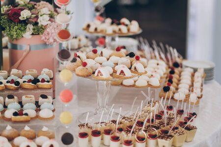 Delicious creamy desserts with fruits,  panna cotta, cakes and cookies on table at wedding reception in restaurant. Luxury catering service. Wedding candy bar 版權商用圖片