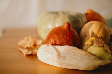 Happy Thanksgiving. Pumpkins, autumn leaves, walnuts, chestnuts, corn, apple and pear on rustic wooden table in sunny room. Autumn seasonal harvest. Space for text Stock Photo