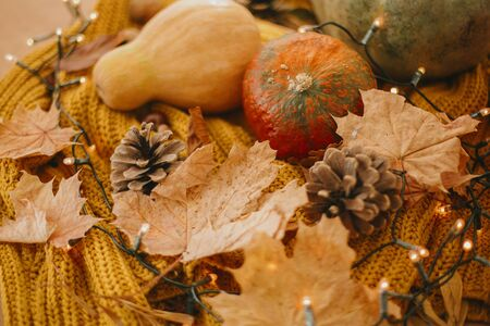 Cozy image of pumpkins, autumn leaves, warm lights and pine cone on yellow knitted sweater. Hello autumn. Fall hygge